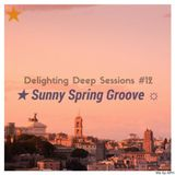 ★ Sunny Spring Groove ☼ Delighting Deep Sessions #12 - mix By APH