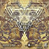 Caracal Spirit - Soul Essence (Epic Set) 2017