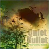 Dee-Bunk & Djanzy - Quiet Bullet (Sunday Joint)