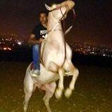 Remon Adeeb