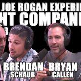 Fight Companion - June 3, 2017