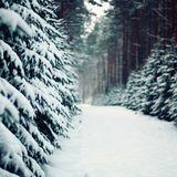 Rave On Snow Spezial 3