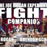 Fight Companion - September 2, 2017
