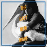 Storm Boy - 1976 - Henri Safran - The Last New Wave