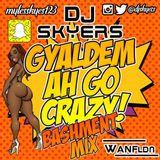 #GYALDEMAHGOCRAZY Bashment Mix @djskyers