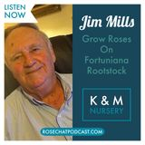 Jim Mills | K & M Roses | Growing Roses on Fortuniana Rootstock