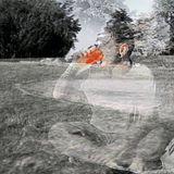 the figurehead - Last Dance Of Summer