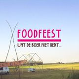 Part of the set at Foodfeest Delft 2015 - 05 - 25