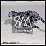 Rebel Mix #207 ft David Paglia (Soul Clap Records) - Feb11.2017