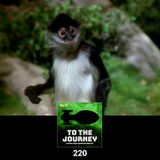 To The Journey : 220: Who's Bringing the Monkey?