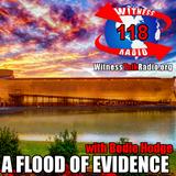 A Flood of Evidence - Ep. 118