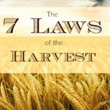 Laws of the Harvest - Audio