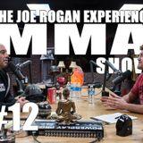 JRE MMA Show #12 with Ben Askren