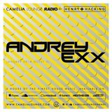 Camelia Lounge Radio with Henry Hacking & Andrey Exx