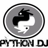 Electro Mix 2017 by Python DJ