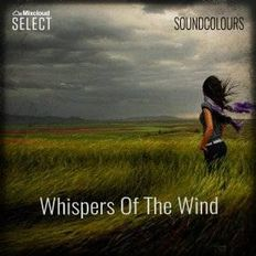 SoundColours | Whispers Of The Wind