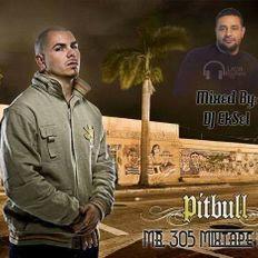 DJ EkSeL - Mr. 305 Mixtape (Vol. 1)