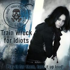 IDJ 23 | Train Wreck for Idiots | Cygnostik 7/15/2019