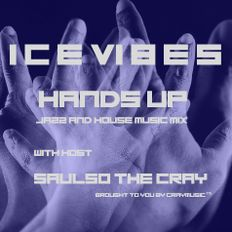 ICE VIBES #3 HANDS UP JAZZ AND HOUSE MIX BY SAULSO THE CRAY