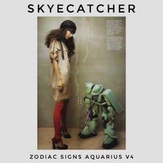 Zodiac Signs Aquarius Volume 4