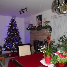 TAT_049 Cool And Collected (Christmas Dinner Music) (60:00)