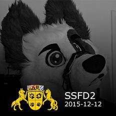 NYAAN@SSFD2 (2015-12-12) (Re-Recorded)
