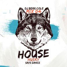 House Husky Mix04 Disco Funk / Disco House, Funky, Soulful, RMX / Instagram & Socials @djbearcole