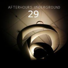 AFTERHOURS UNDERGROUND 29 Mixed By Buddhafish