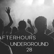 AFTERHOURS UNDERGROUND 28 Mixed By Buddhafish