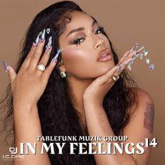 IN MY FEELING 14 (radio)