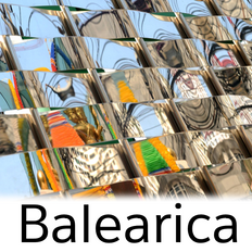 Balearica October 2019
