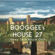 Booggee's House 27