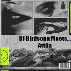 DJ Birdsong Meets Attila
