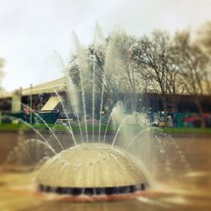 February 13 - 26, 2020 Seattle Center International Fountain Mix