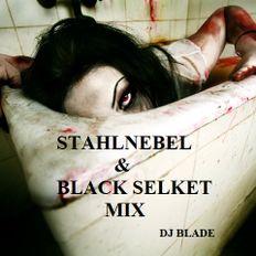 STAHLNEBEL & BLACK SELKET || DJ BLADE