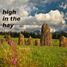 high in the hay