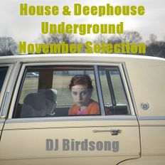 House & Deephouse Underground November Selection