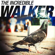 The incredible walker