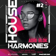 House Harmonies Presents - Adri Blok Guestmix #2 (Adri Blok, Block & Crown, Hardcopy)