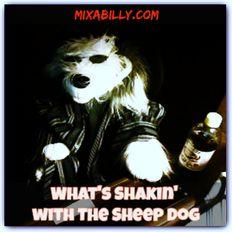 Whats Shakin' - Ep 010 - 11-06-19