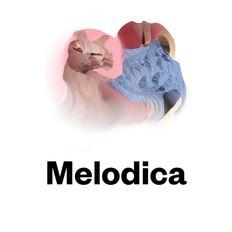 Melodica 11 March 2019