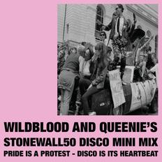Wildblood and Queenie's Stonewall50 Disco Mini Mix