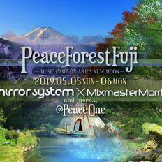 Mixmaster Morris @ Fuji Peace One 4