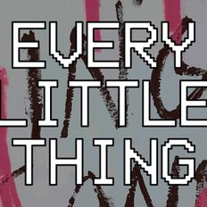 EVERY LITTLE THING.......(1965 - 2018)