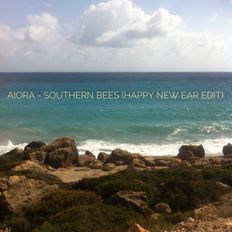 Aiora - Southern Bees podcast ( happy new ear edition )