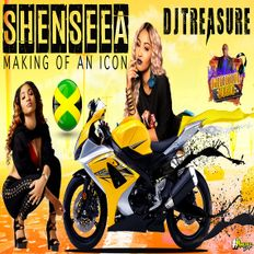SHENSEEA MIX 2020 RAW: SHENSEEA DANCEHALL MIX 2020  MAKING OF AN ICON | DJ TREASURE 18764807131