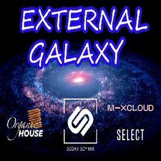 External Galaxy