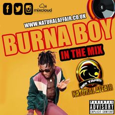 Burna Boy In The Mix