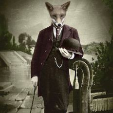 The Dapper Fox