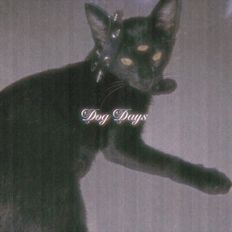 Dog Days 013 - Roychuu [15-01-2021]